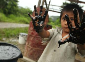 Disastro ambientale : l'oro nero