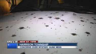 Mystery gunk in Harrison Township