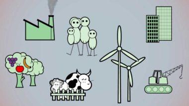 Come funziona l'economia reale? I saldi settoriali – filmato integrale 13 min – video didattico