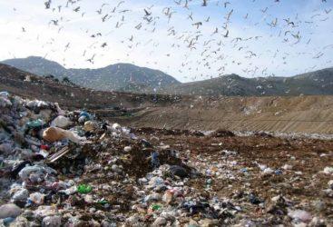 """Ecco gli """"accordi segreti"""" del M5S sui rifiuti a Roma. Orfini: """"Quello che è accaduto è inquietante"""""""