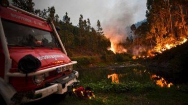 Portogallo, apocalisse di fuoco a Pedrógão Grande: 62 morti tra i quali 4 bambini