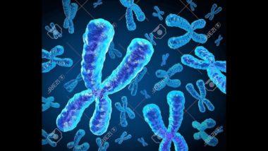 Errori della Scienza sul DNA , La genetica e la biologia!