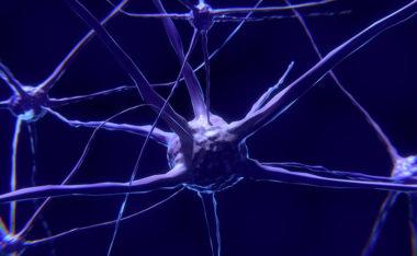 Scienza in crisi: i ricercatori non sanno più riprodurre e confermare molti degli esperimenti moderni