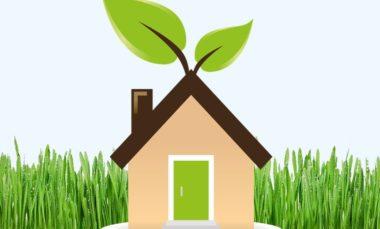 Read more about the article Realizzare una casa green – Laura Raduta