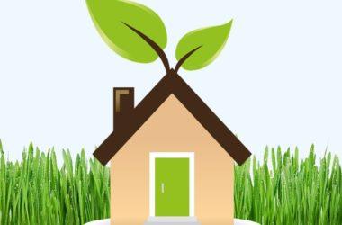Realizzare una casa green – Laura Raduta