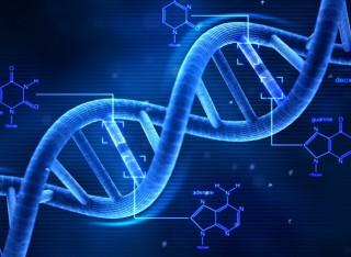 Dna 2.0; se può essere riprodotto in laboratorio non è più una prova schiacciante