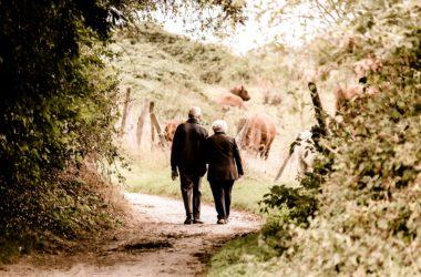 Pensioni: con il contributivo si perde il 30% della pensione e questi pensano ai vitalizi