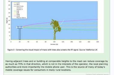 Inchiesta : Ecatombe di alberi, Intralciano il wireless del 5G