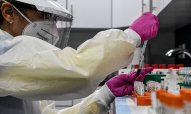 Trump autorizza la cura con il plasma, sondaggio: favorevole o contrario ?