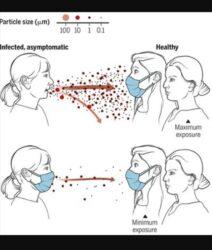 Esperta Mondiale per le Malattie Infettive: l'utilizzo delle mascherine per i bambini sotto i 2 anni può provocare il soffocamento