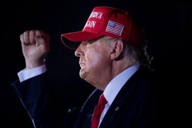 """Elezioni Usa: """"Altri 17 Stati contro i brogli"""""""