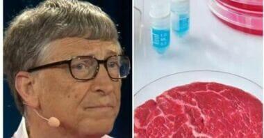 Bill Gates salva il pianeta e ci da consigli : «I Paesi più ricchi dovrebbero mangiare solo carne sintetica»